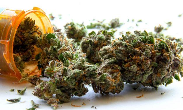 Marijuana glossary: Ten words every marijuana patient needs to know