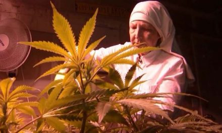 Nuns in Merced defend their medical Marijuana business