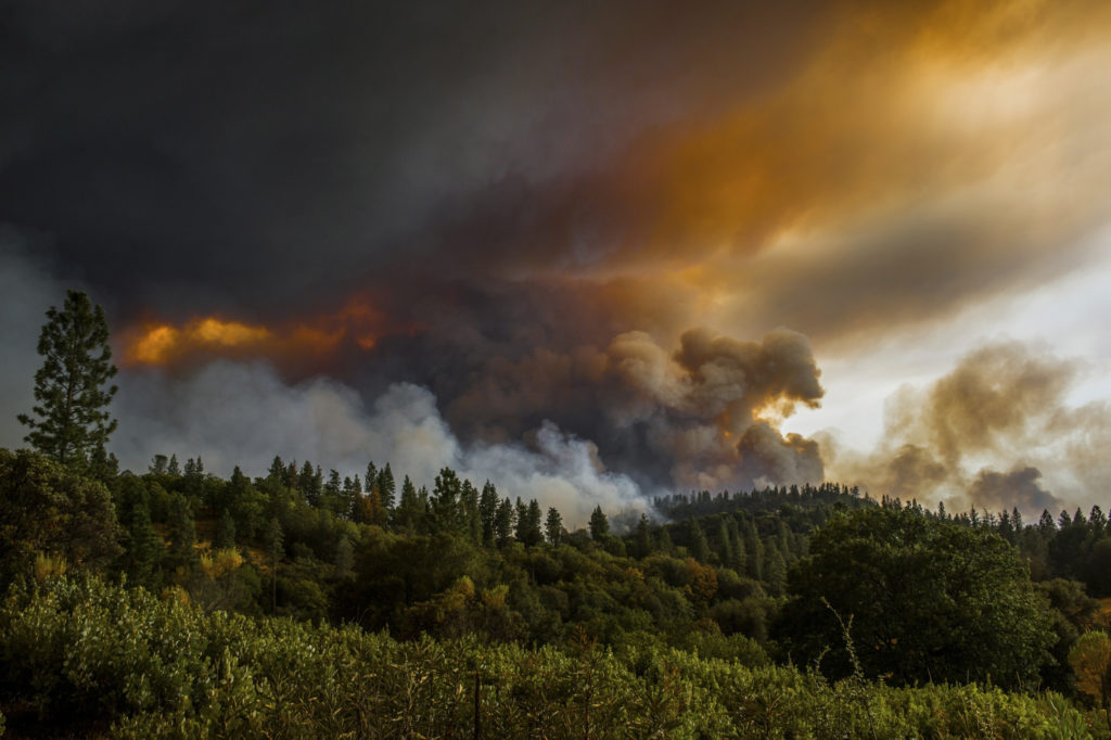 2016 Tahoe For Sale >> Medical Marijuana Helps Calaveras County Recover After Disastrous Fire ⋆ The Emerald Report