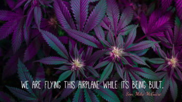 """We are flying this airplane while it's being built"" - Sen. Mike McGuire Quotes from California's first Wine and Weed Symposium, held in Santa Rosa by the Wine Industry Network."
