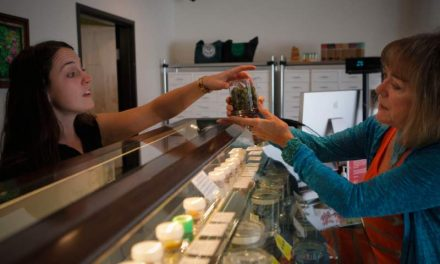 Petaluma reacts to legal cannabis