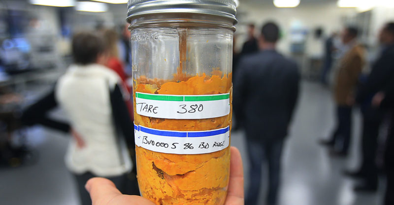 A sample of extracted product from marijuana that will go through further testing, Wednesday Dec. 14, 2016 at CBD in Santa Rosa. (Kent Porter / The Press Democrat) 2016 Kent Porter