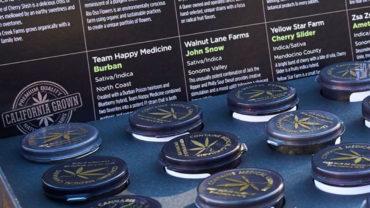 Natural Cannabis Company's Harvest Box 2016