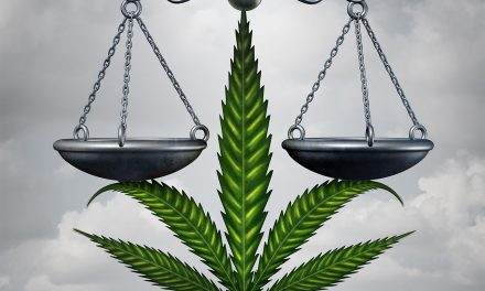 Awkward: Lawyer Wants Weed As Payment; Gets License Suspended