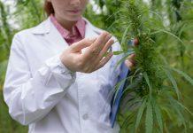 Weed scientist