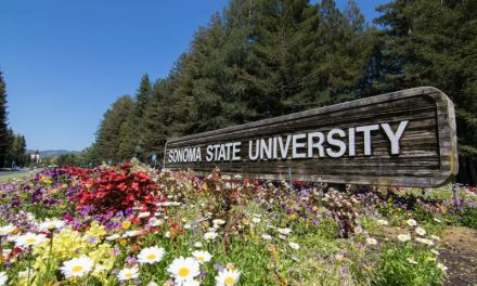 Sonoma State University To Offer Medical Cannabis Course