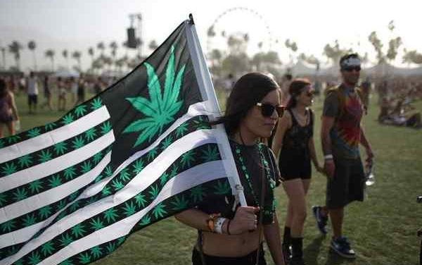If You're Going To Coachella Leave Your Weed At Home