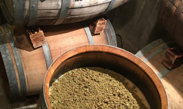 Sonoma Makes Way for Cannabis Wine