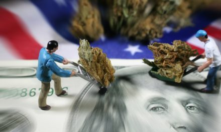 Despite state legality, banks staying far away from cannabis