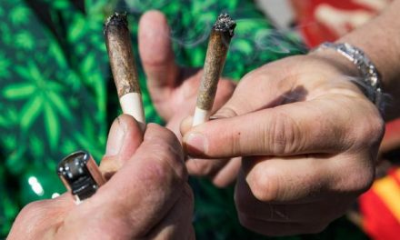 Forget That Stoner Stereotype? Study Says Marijuana Users More Successful