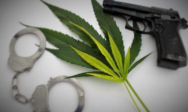 Sonoma County medical marijuana facility robbed at gunpoint