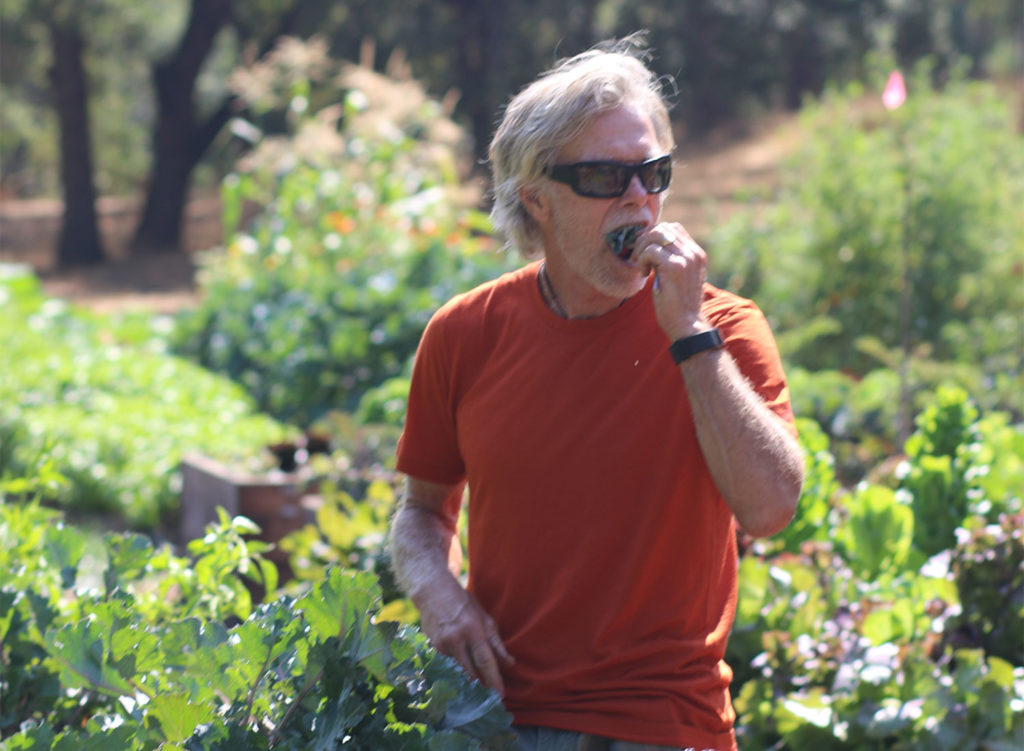 Mike Benziger at his farm, eating lettuce. Heather Irwin/Emerald Report.