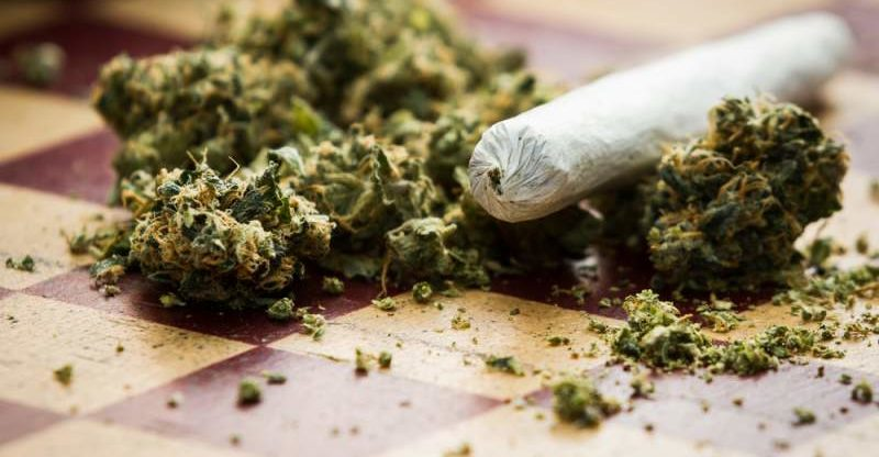 marijuana press democrat