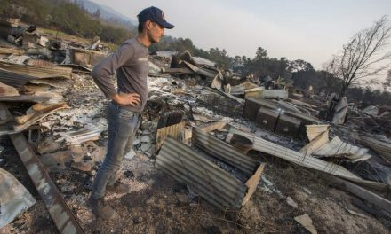 Sonoma Valley cannabis farm goes up in smoke