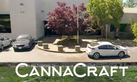 Red Cross headquartered at Santa Rosa cannabis company