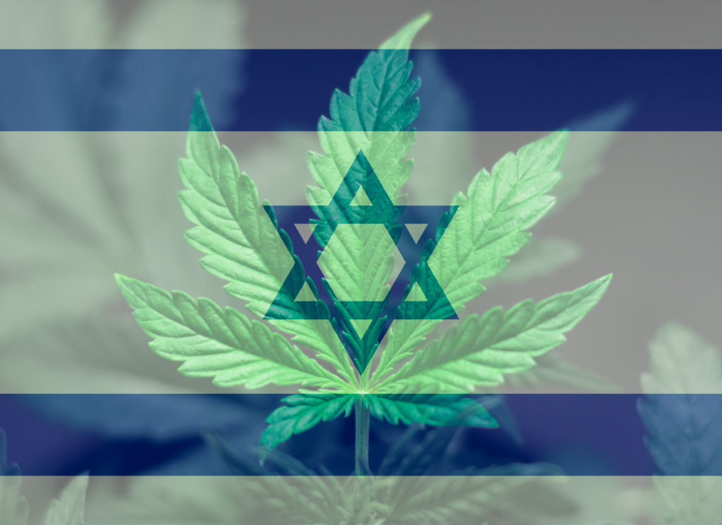 'Israel is on its way to becoming the center of the medicinal cannabis movement.'